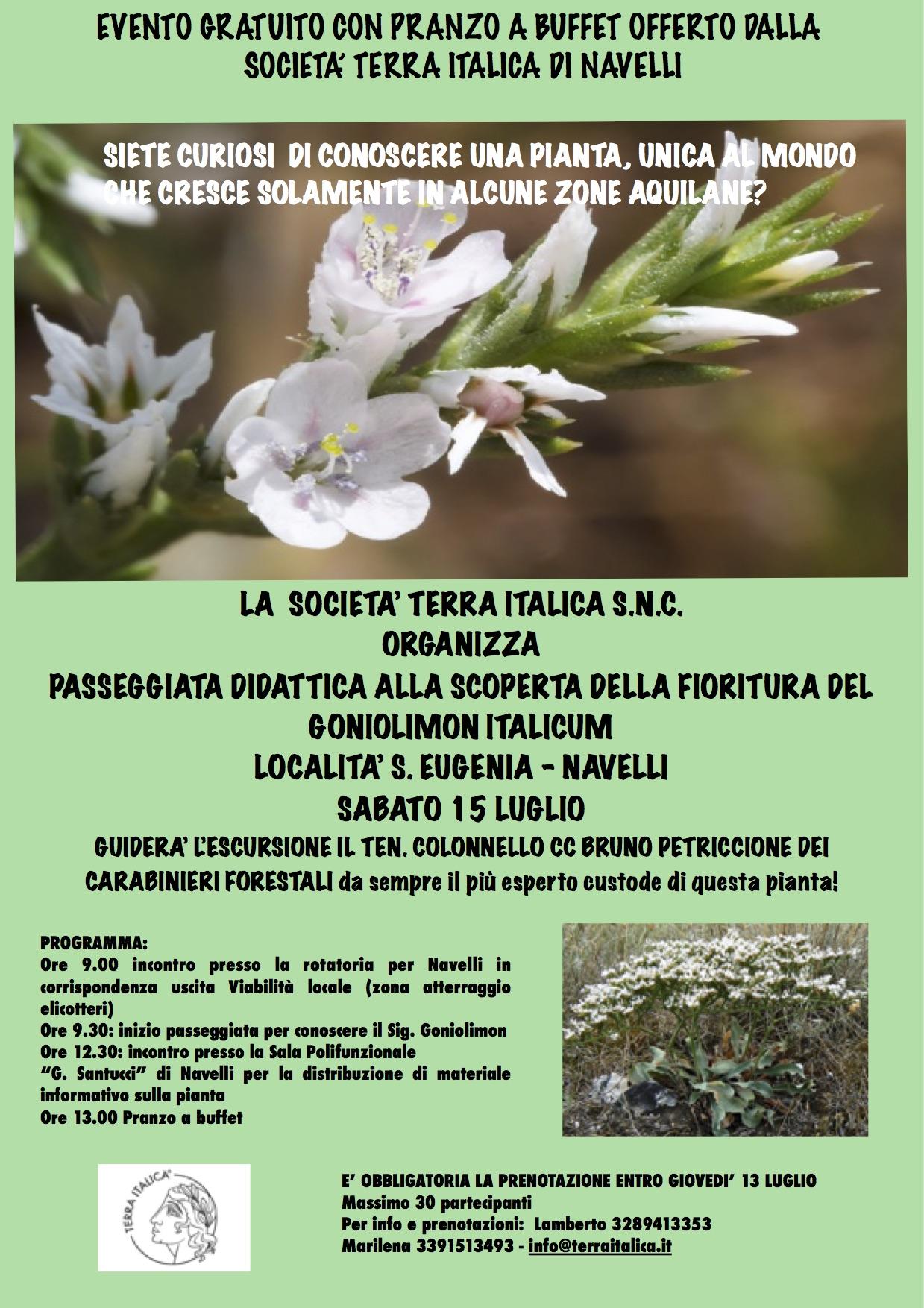 LOcandina passeggiata alla visita del Goniolimon italicum